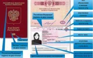 Оформление загранпаспорта через интернет на сайте Госуслуги – инструкция
