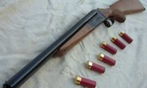 Разрешение на хранение и ношение оружия через сайт Госуслуги